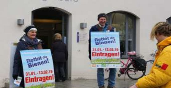 Bees desire: activists raise serious allegations against the Freising citizens ' office