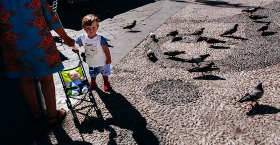 Allegations of tourist harassment: Spanish town wants to resettle 5000 pigeons