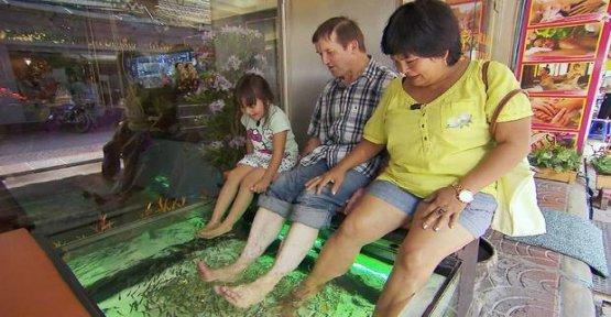 Farmer wants a wife: If farmers take a holiday
