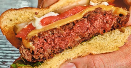 Meat of the future: This Burger is really tasty, but not really