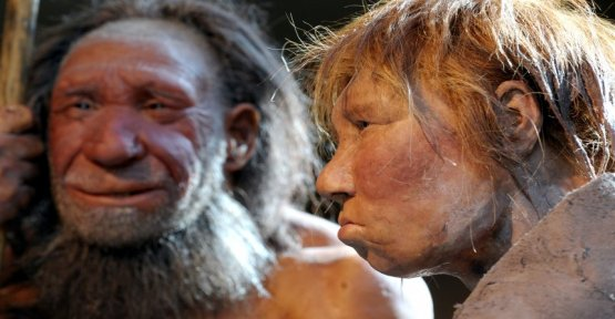 The oldest proof: Neanderthal children affected by lead poisoning