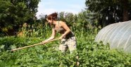 Woman is pouring a bit of vinegar on plants - it happens absolutely Amazing